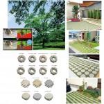 ECOな庭造り―効率よく緑化する舗装材